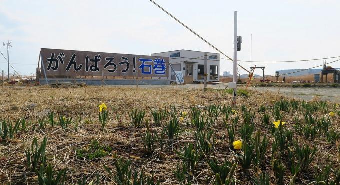 2017年3月の「がんばろう石巻」看板