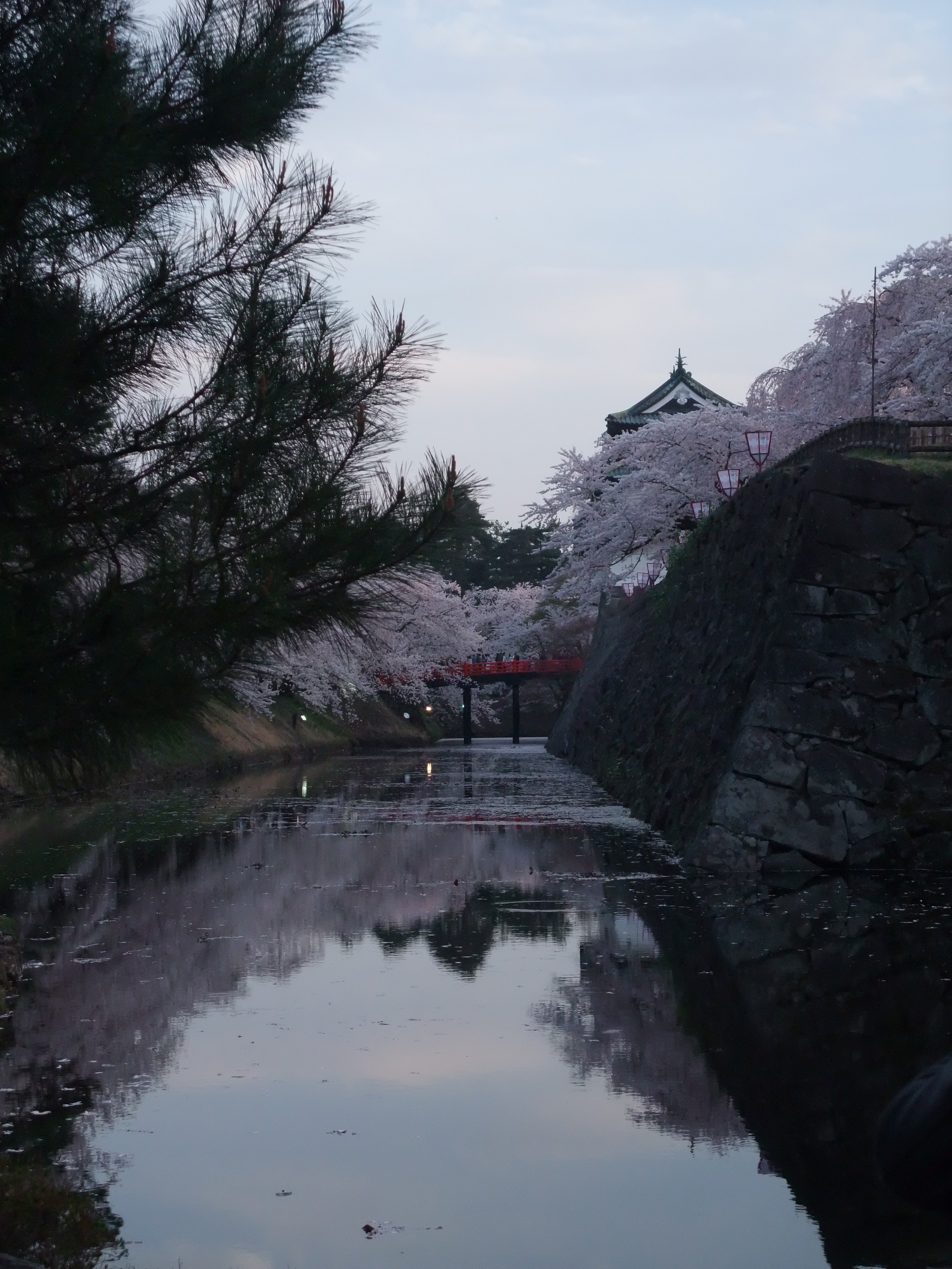 2014年さくら祭りの弘前城と内濠