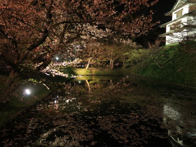 桜散る弘前城の夜景撮影(手持ち)