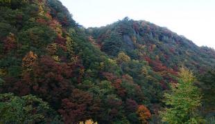 相馬ダム近くの屏風岩