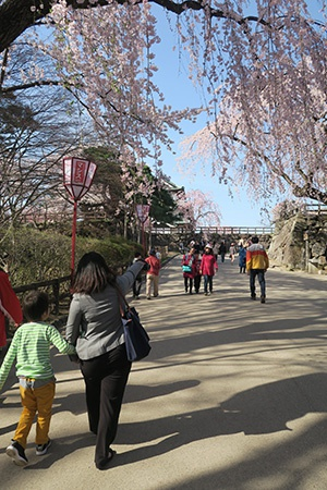 NHK記者さんと手をつないで歩く息子
