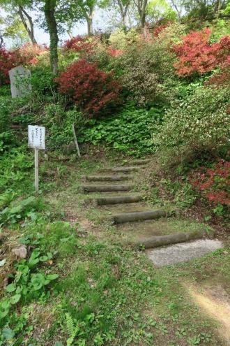 自然な坂道