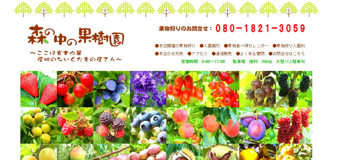 森の中の果樹園ホームページ