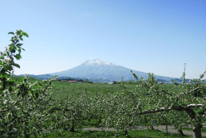 りんご公園から岩木山をのぞむ(PowershotG7Xにて撮影)