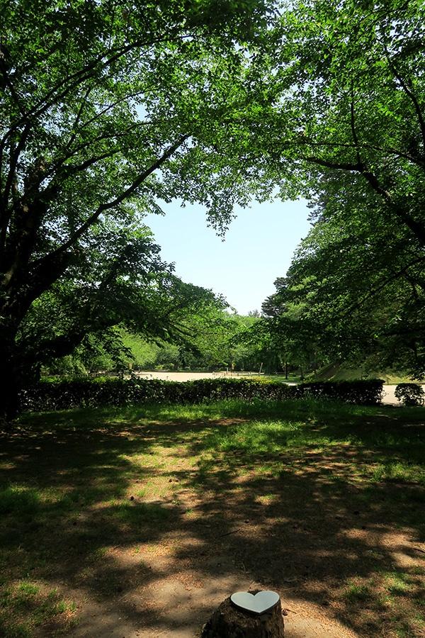 弘前公園のハート
