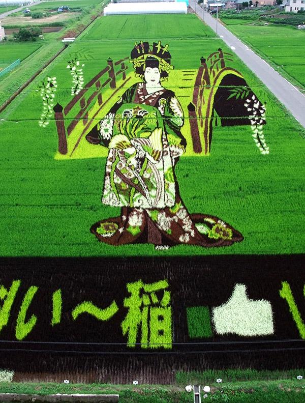 2013年の田舎館村田んぼアート