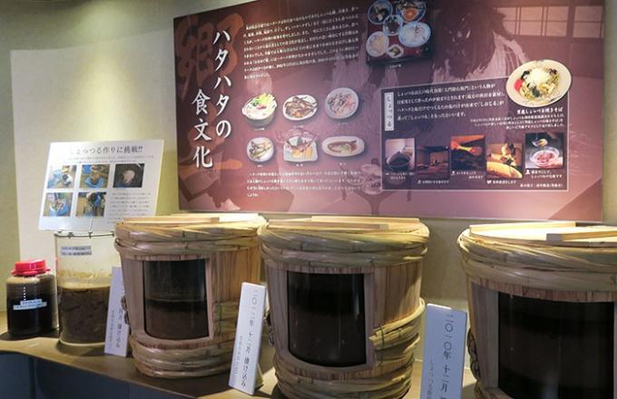 食文化、歴史などハタハタコーナーの充実ぶり