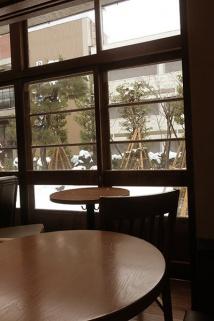窓の外は雪囲いをされた木々
