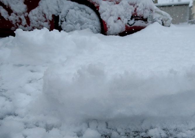 数時間で積もった雪