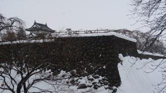 下条橋から見る弘前城天守(曳屋後)