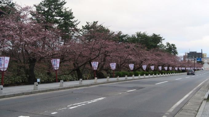 弘前市役所前の外濠