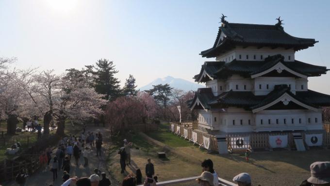 弘前城天守閣と岩木山と桜