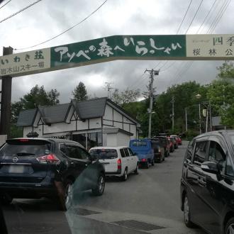 桜林公園入口ゲート