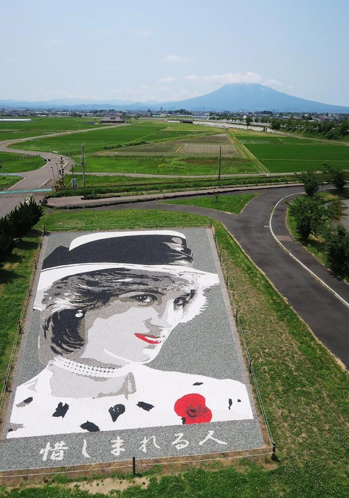 石のアート「Princess Diana」