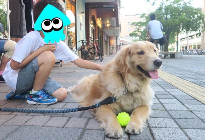 しばらくダディーズの看板犬アポロと遊ぶ息子