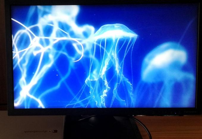 ノートPCからHDMIケーブルで出力して「海月姫」視聴