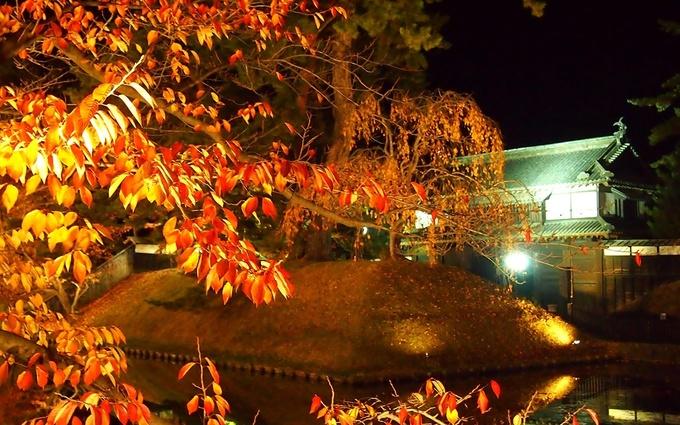 2018年11月11日菊と紅葉まつり最終日の追手門
