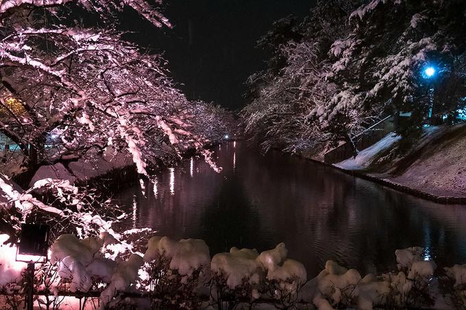 柵に積もる雪