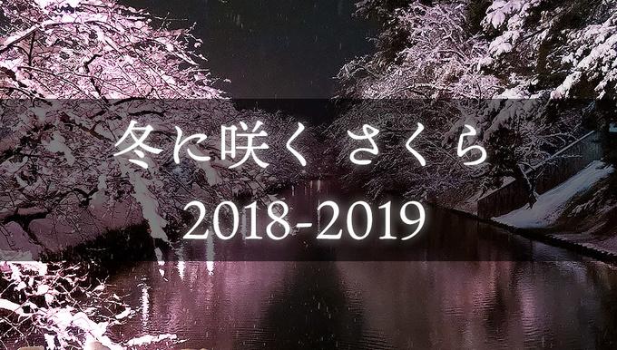 冬に咲くらくら2018-2019