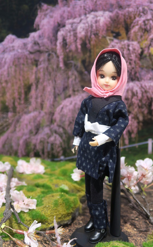 三春滝桜と目屋リカちゃん