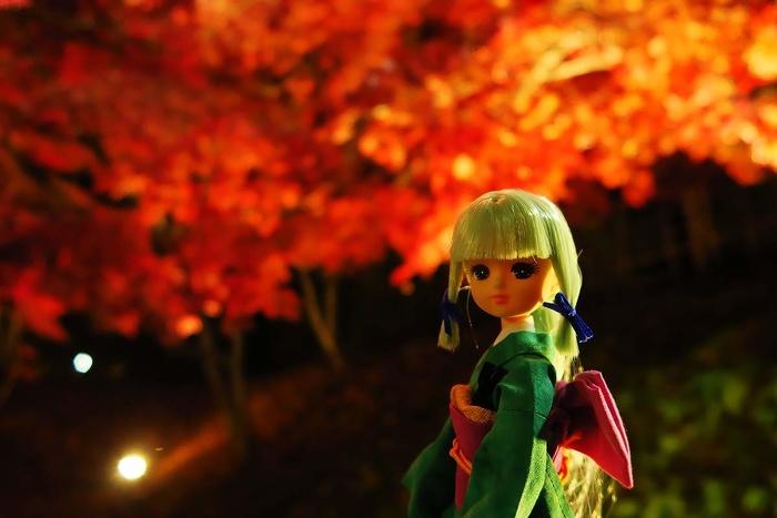 弘前公園をいち姫風リカちゃんと