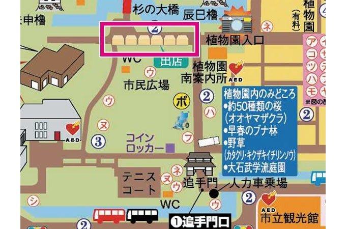【追手門】植物園入口~杉の大橋