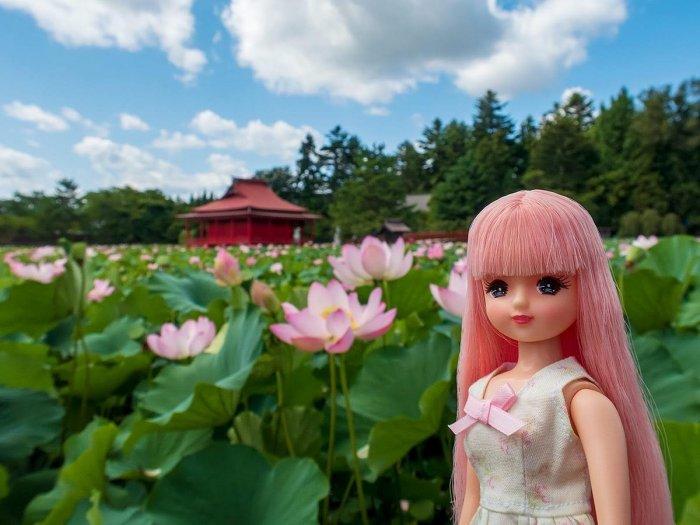 ピンクのスマイルリカちゃんと蓮